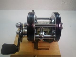 IMGP0635.JPG