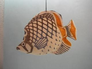 060 アミメチョーチョー魚.JPG