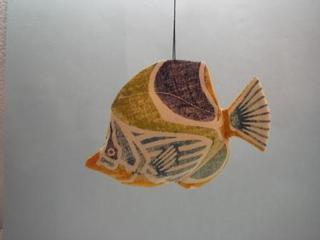 061 セグロチョーチョー魚.JPG