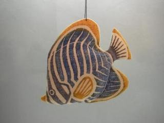 062  ミカドチョーチョー魚.JPG